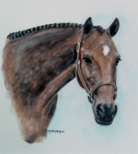 Pastel portrait of horse