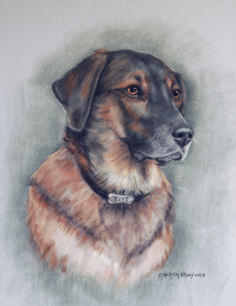 Pastel Portait Dog Bert