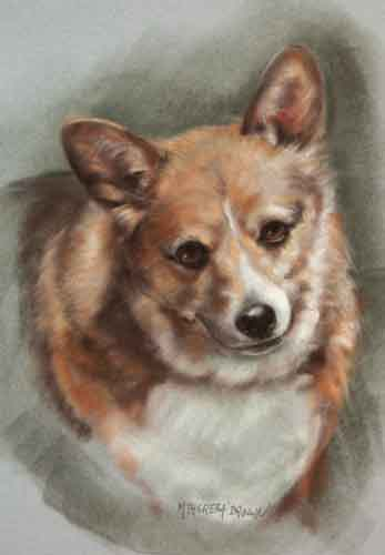 pastel portait dog corgi