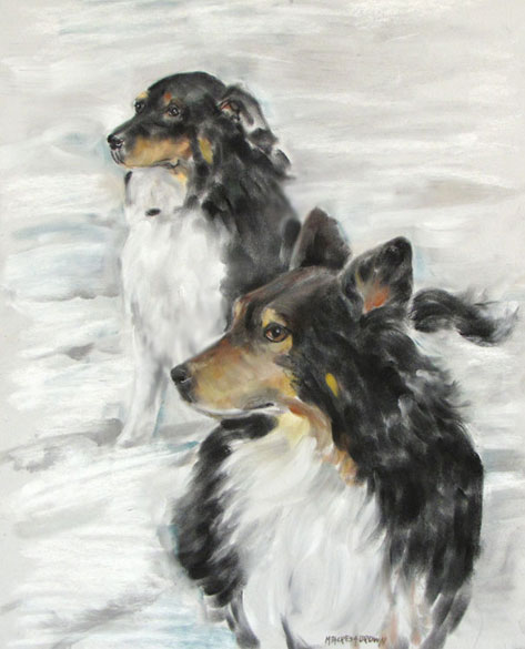Pastel Portrait of shelties in snow